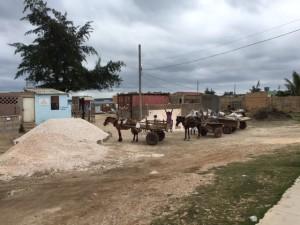 Cuba 7_3