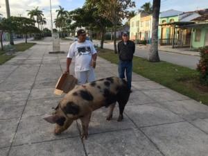 Cuba 9_3